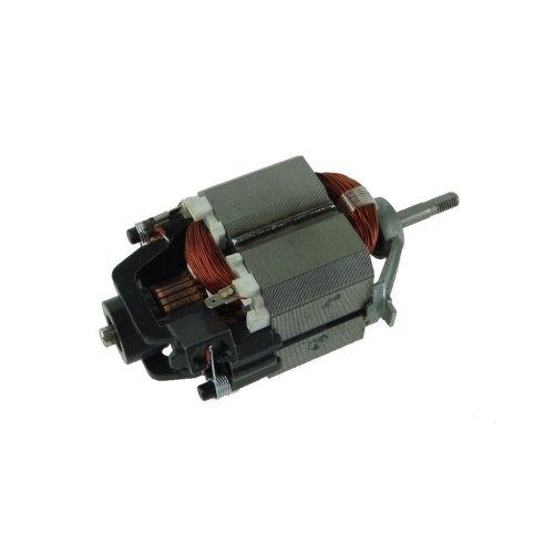 Flymo GBV2500 Motor
