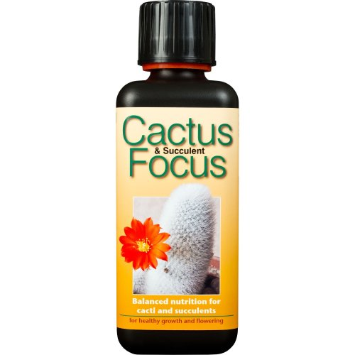 Cactus and Succulent Focus 300ml