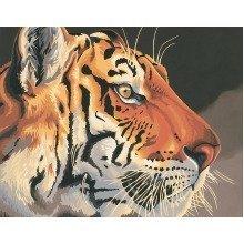 Dpw91323 - Paintsworks Paint by Numbers - Regal Tiger