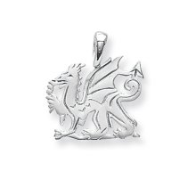 Childrens Sterling Silver Small Welsh Dragon Pendant On A Curb Necklace