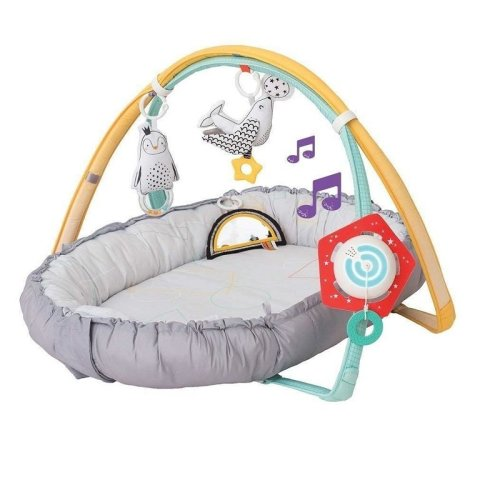 Taf Toys Musical Newborn Nest Gym