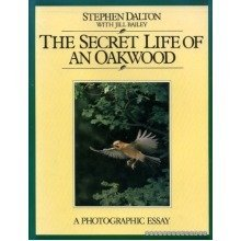 The Secret Life of an Oak Wood: a Photographic Essay