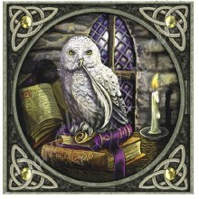 Lisa Parker Owl Spell Books Wolf Blank Square Greeting Card Birthday Christmas Pagan Wiccan Fantasy Gift