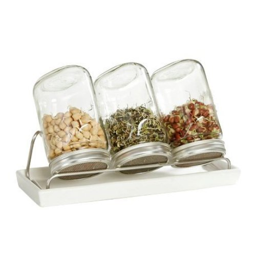 Eschenfelder Glass Sprouting Jars x3 1000ml (Sold with Stainless Steel Rack)