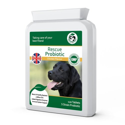 Probiotic Supplement for Dogs/Dog Diarrhoea Tablets by Good for Pets | Dog Probiotics Supplement with Dog Digestive Enzymes & Prebiotic to aid Dog...