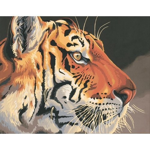 Dpw91323 - Paintsworks Paint by Numbers - Regal Tiger
