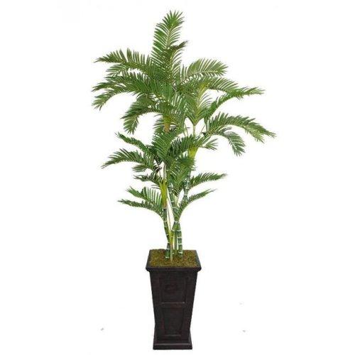 Minx NY VHX112201 Laura Ashley 91 in. Tall Palm Tree in 16 in. Fiberstone Planter