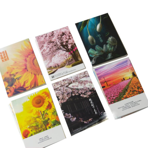 90 PCS Flowers Postcards for Worth Collecting