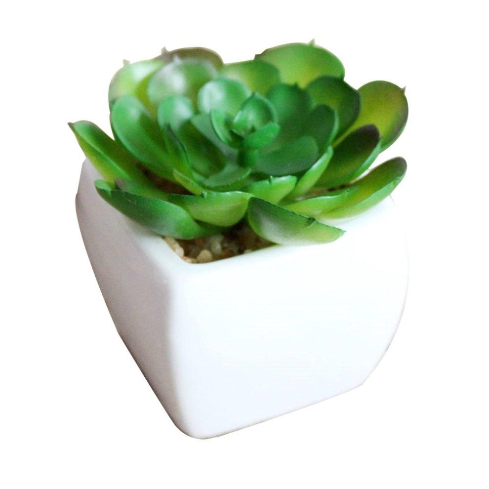 Small Artificial Succulent Plants In Mini Modern White Ceramic