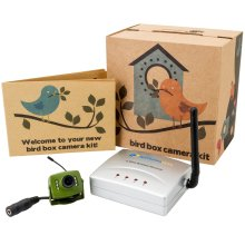 Green Feathers Wireless Bird Box Camera with Night Vision
